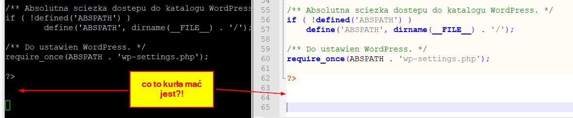 Jak odszukać nadmiarowe puste linie lub spacje pozostawione w plikach php?
